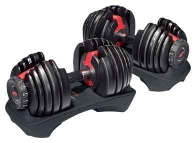 Bowflex SelectTech 552 Adjustable Dumbbells_1