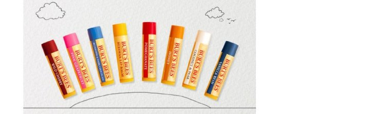 Burt's Bees 100% Natural Moisturizing Lip Balm_6
